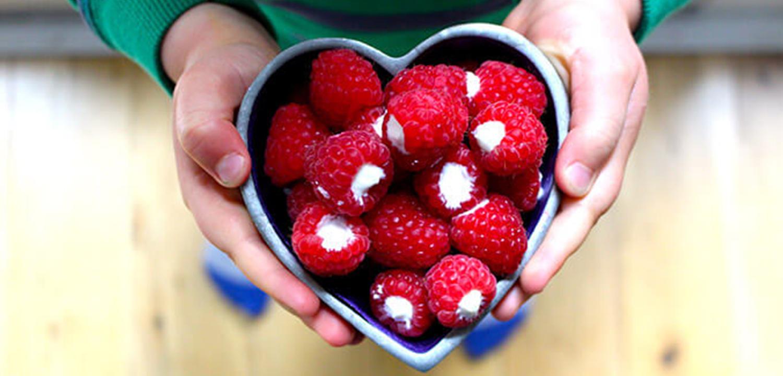 raspberries-and-greek-yogurt